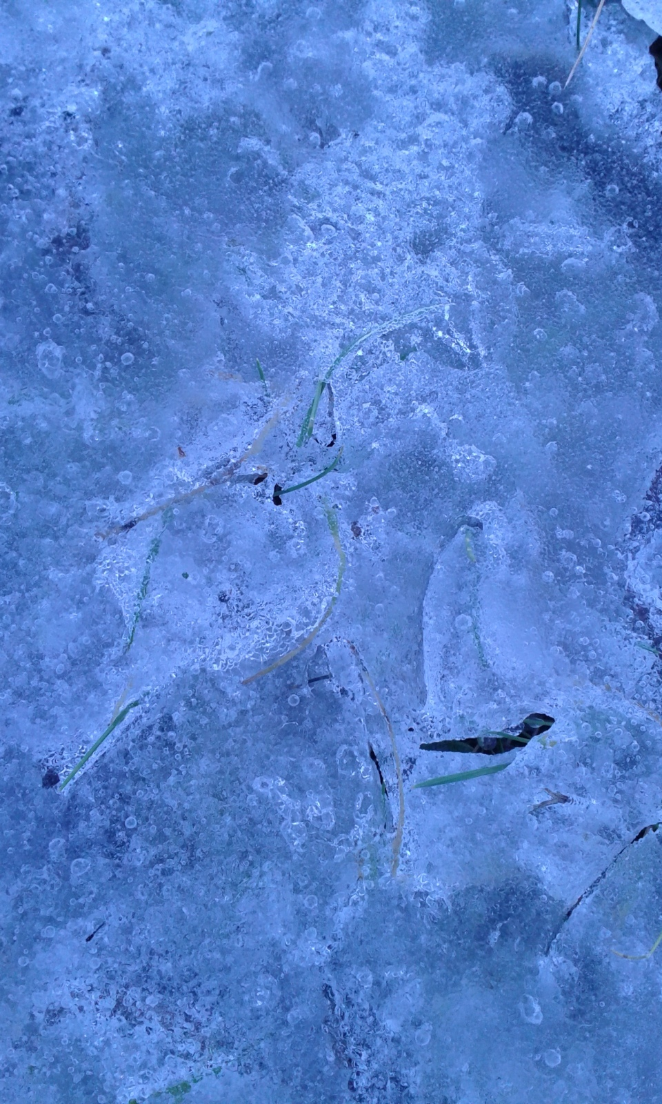 Blue ICE - flowing design by suri (4)